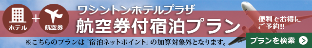 鹿児島 航空券付宿泊プラン
